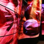 LG annuncia i display OLED Open Frame a curvatura regolabile della serie 55EF5E