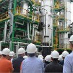 ENEA vince bando da 5 milioni per lo sviluppo della bioraffineria e della chimica verde