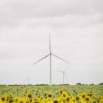 Philips: obiettivo carbon-neutral entro il 2020
