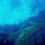 Un drone per esplorare i fondali marini: al via il progetto SUSHI DROP