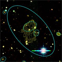 LOFAR Radio Galaxy Zoo: progetto di citizen science in ambito astrofisico