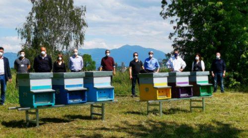 Giornata Mondiale delle Api: il sito Electrolux di Susegana riserva loro uno spazio verde