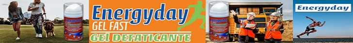 Leaderboard Energyday