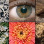 Natura e intelligenza artificiale per il nuovo spot di Beko