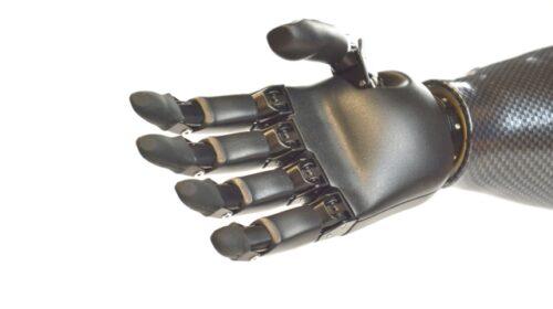 Un muscolo artificiale per i robot del futuro